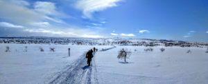 Laponia en bici de nieve